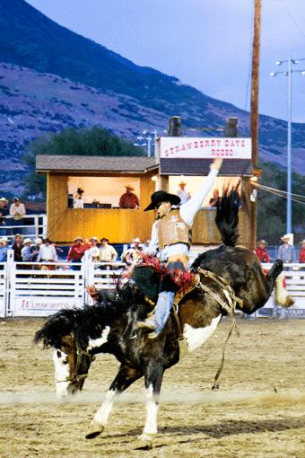 Strawberry Days Rodeo
