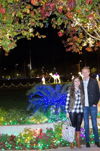Mesa Temple Lights
