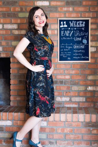 Pregnancy Update: 11 Weeks Pregnant