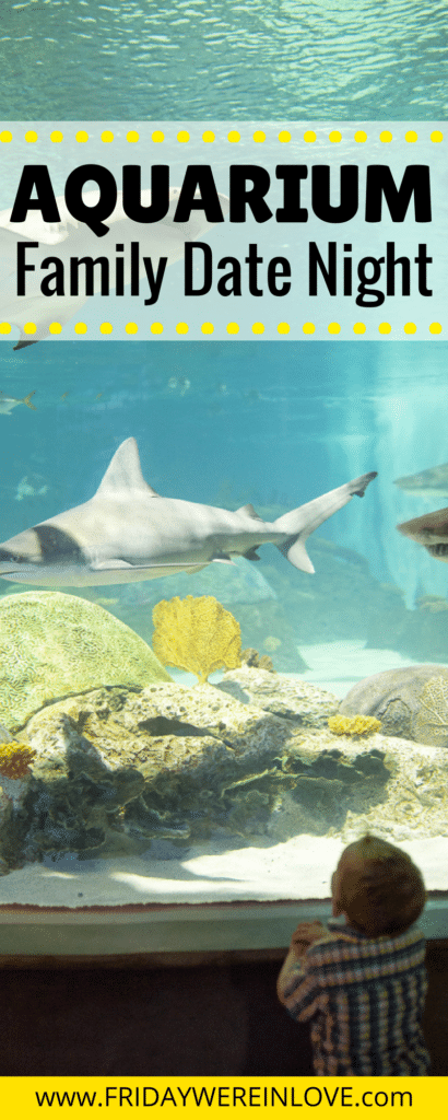 family date idea: this fun aquarium family activity is perfect for kids of all ages, and makes family fun so easy #familyfun #familydate #aquarium #activitiesforkids